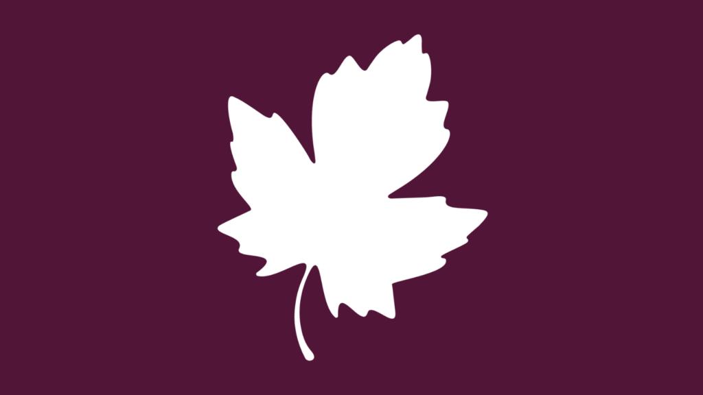 white maple leaf on purple background
